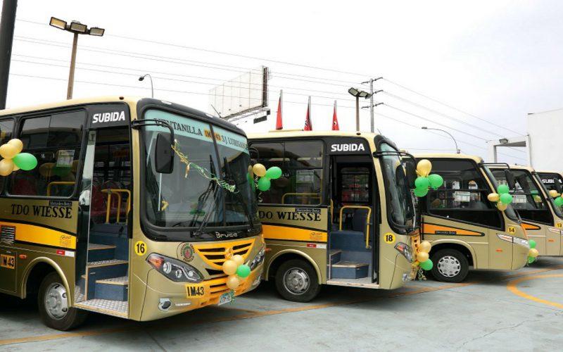 AAP: Las marcas que destacaron en la categoría 'Ómnibus y Minibús' de agosto